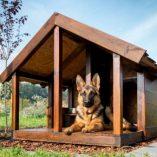 Cuccia per cani in legno Leroy Merlin: Prezzo, offerte e guida all' acquisto