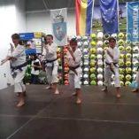Kimono karate Decathlon: Prezzi, offerte e confronto prodotti