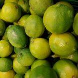 Lime al kg Esselunga: prezzo volantino e offerte