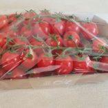 Pomodori Esselunga: prezzo volantino e confronto prodotti